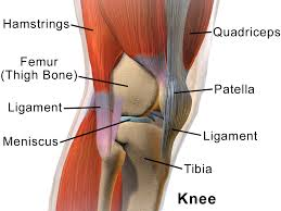 running knee2